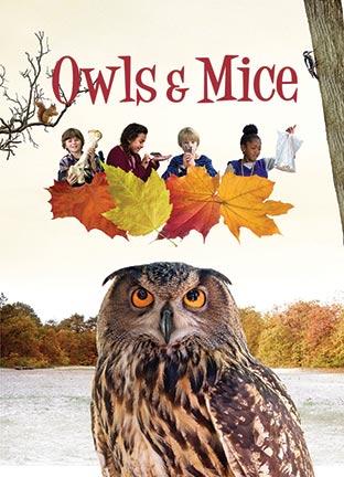 Owls & Mice